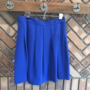 Royal Blue JCrew Skirt